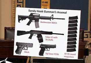 Sandy Hook Guns - Proposed Gun Ban