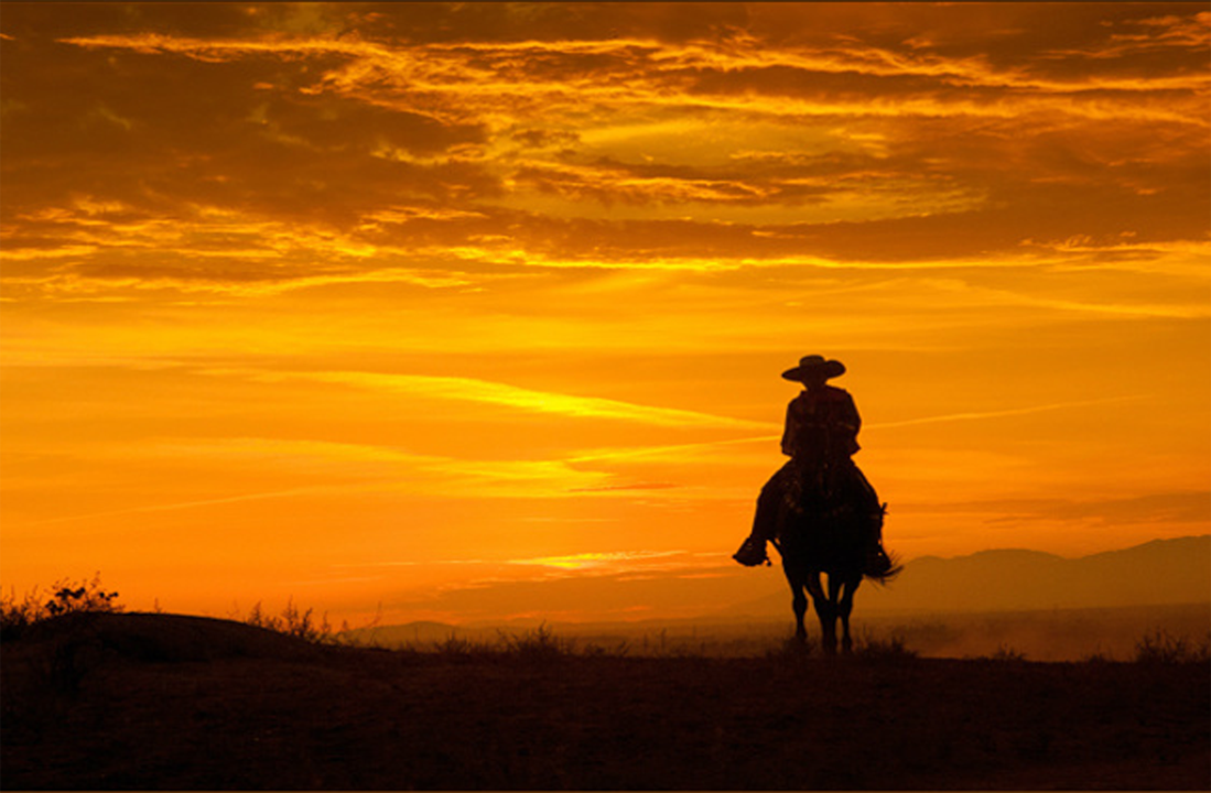 Cowboy Rides Away Texasgopvote