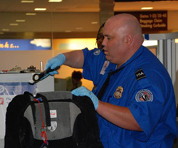 Transportation_Security_Administration_officer.jpg