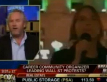 occupy wall street career community organizers revealed