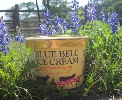 Bluebonnets and Blue Bell