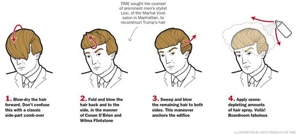 donald trump hair do.jpg