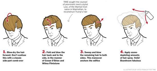 donald trump hair do.jpg