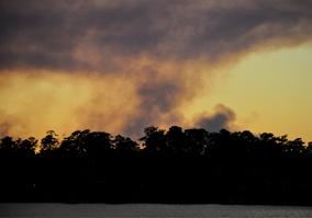 texas-wildfires-magnolia.jpg