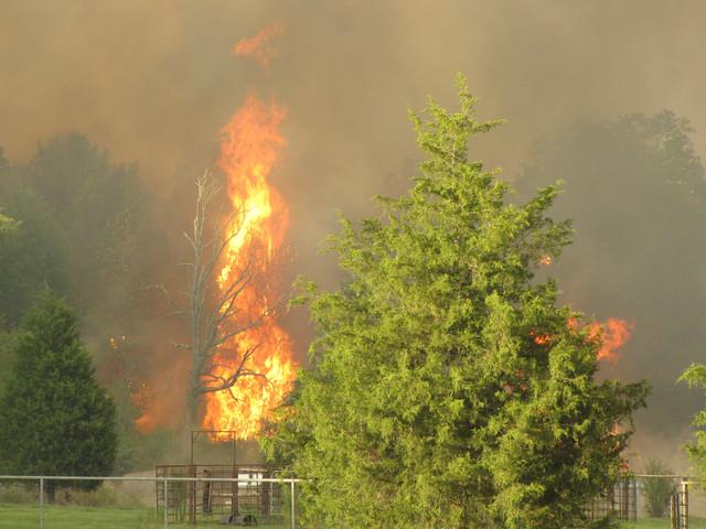 texas-wildfires.jpg