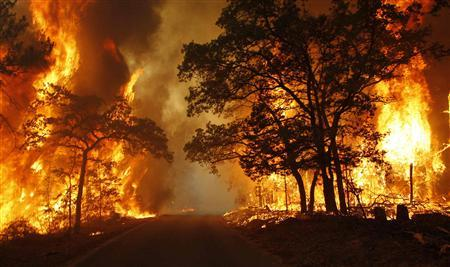 tx-wildfire.jpg