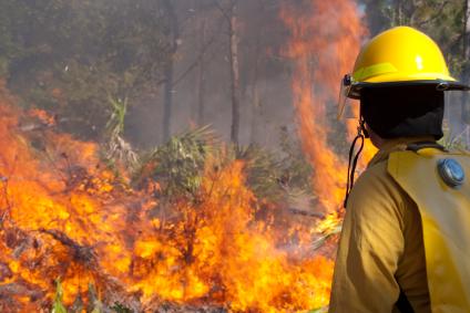wildfire-texas.jpg